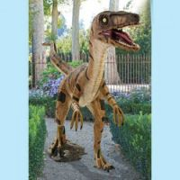 Theme: Lawn Ornaments - Velociraptor