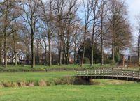 Winterswijk: er bloeien narcissen 26 januari 2021
