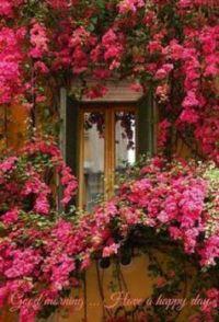 Flowery Entrance