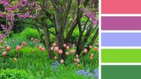 Tulips by the Trees