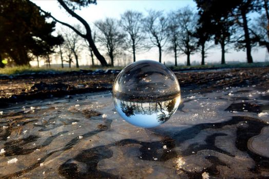THEMES-Things that are round- Crystal Ball on Ice Puddle