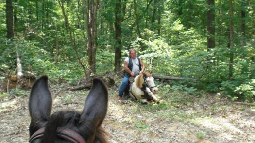 Miss Kitty tired out on the trail ride.