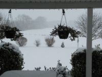 Snow Fall December 15 2017-3