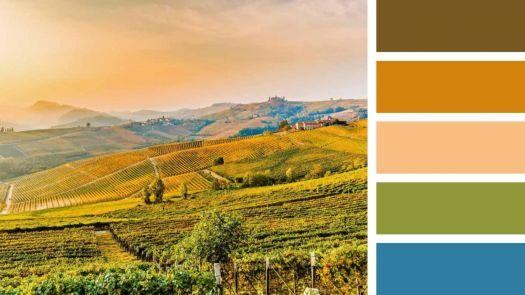 Barolo vineyards, Italy