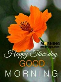 good morning thurs