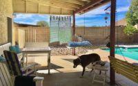 Mikie on sunny back porch 5-2020