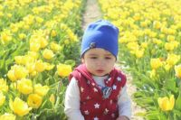 Tulips and baby