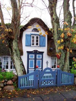 Themes: Little Blue Building