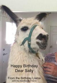 Happy Birthday Dear Sally!