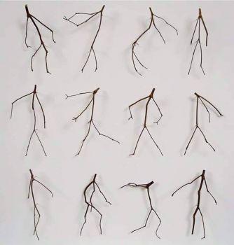 Twiggy sticks