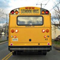 Behind a School Bus