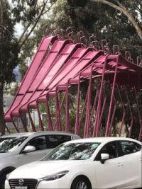 Pink Peril
