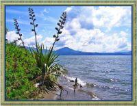Southern Lake Taupo.