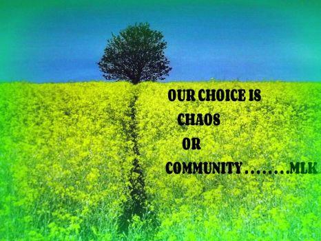 Community . . . . ..