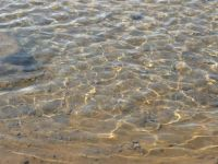 Þingvellir shore ripples