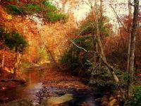 Mill Creek, Bedford County, Virginia