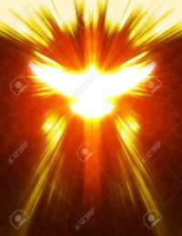 -shining-dove-with-rays-on-a-dark-golden-background