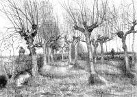 drawing van gogh