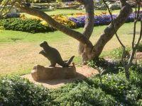Dinosaur in the Toowoomba Botanical Gardens