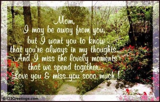 I Miss You, Mom!