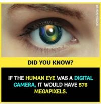 If the human eye was a digital camera....