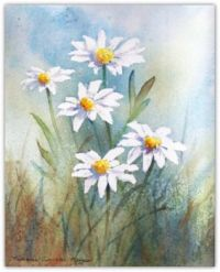 Field Daisies by Stephanie Meegan