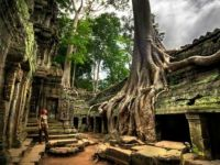TEMPLES OF  SIEM REAP, CAMBODIA