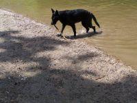 Rita u vody