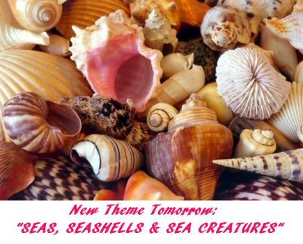 "New Theme Tomorrow: ""SEAS, SEASHELLS & SEA CREATURES"""