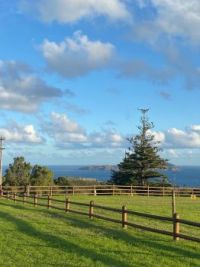 Nepean Island off Norfolk Island, Australia