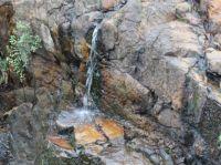 Waterfall at W Tree