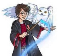 ⚡ Harry And Hedwig ⚡