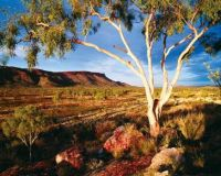 The-West-MacDonnel-Ranges-Tourism-NT1