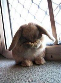 so so shy!