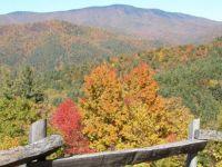 great smokey mountain park
