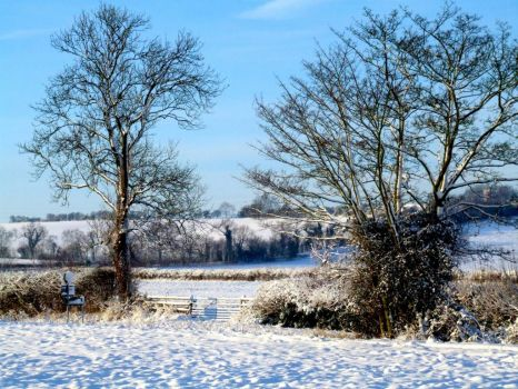 Edge of the Lincolnshire Wolds - 9th Dec 2009