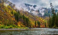 Cascadia Autumn