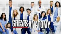 Shows to Watch: Grey's Anatomy