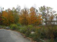 Fall 46