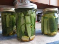 Pickling Pickles