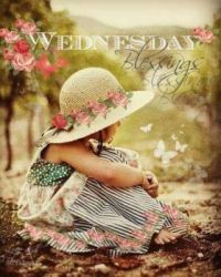 Good Morning - Wednesday Blessings!
