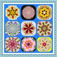 All Made From Flowers Kaleido Collage. Larger.