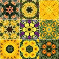 kaleidoscope 70 yellow mix very large