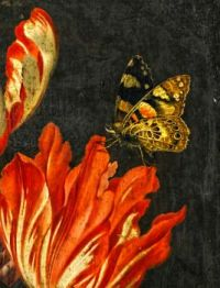 Still Life of Variegated Tulips and Butterfly
