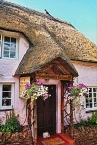 Thatched Tea Shoppe