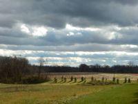 Cool Clouds.