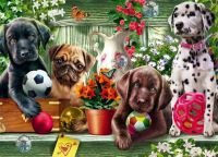 Sweet Dogs Painting