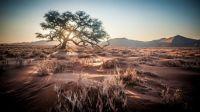 Namibia Africa desert sunrise