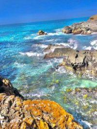 Mia NSW North Coast photo 1