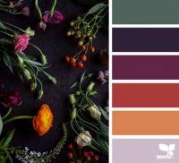 ColorFlora